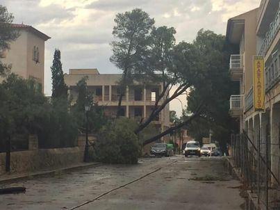 Santanyí, Campos y ses Salines pueden pedir ayudas por las tormentas del DANA en agosto