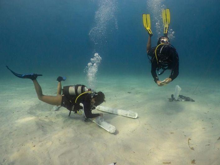 Localizan once sables de principios del siglo XIX en aguas de Formentera