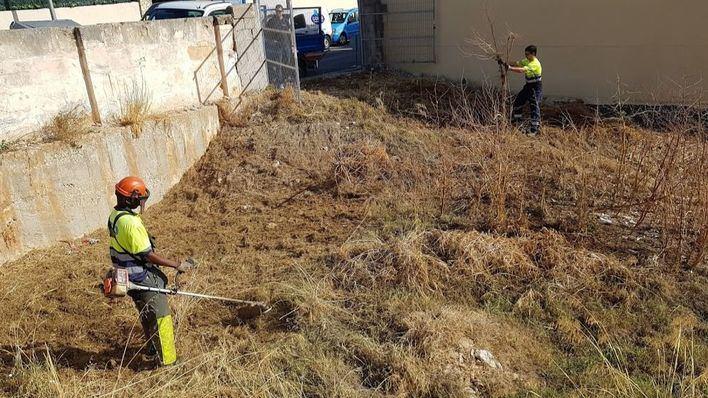 Cort limpia cerca de 265.000 metros cuadrados de una treintena de solares municipales