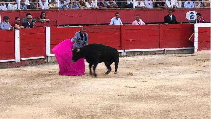 Trece orejas, dos rabos y un toro indultado en el festival taurino de Inca