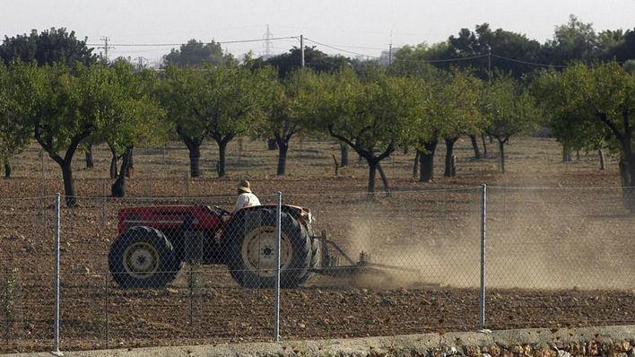 El Fogaiba adelanta el pago de las ayudas europeas a la agricultura ante la situación de sequía