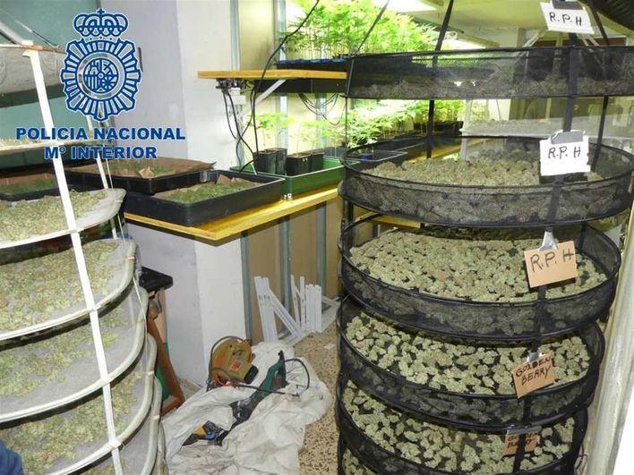 294.000 euros de incautaciones a narcos para prevenir las adicciones en Baleares