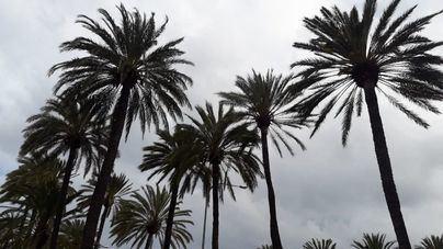 Mallorca en alerta por lluvia