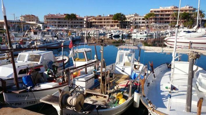 La ecotasa paga un plan para estudiar la actividad pesquera en la Colònia de Sant Jordi