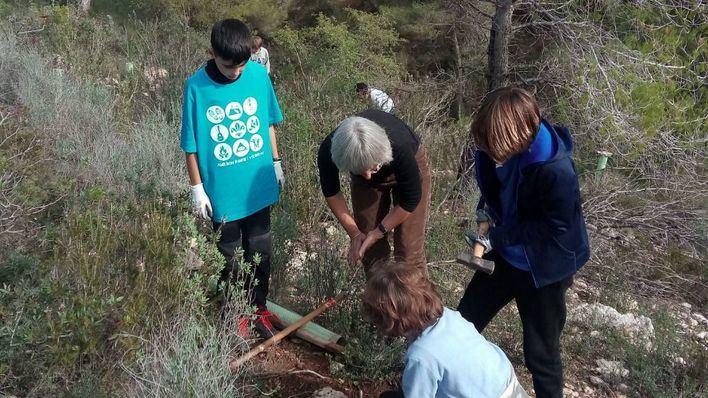 Alumnos de Son Caliu reforestan una zona de Na Burguesa quemada hace cuatro años
