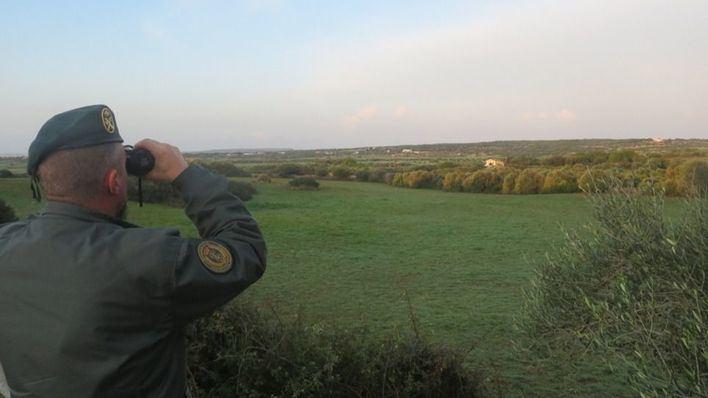 Recuperan 27 aves capturadas del medio natural de Menorca