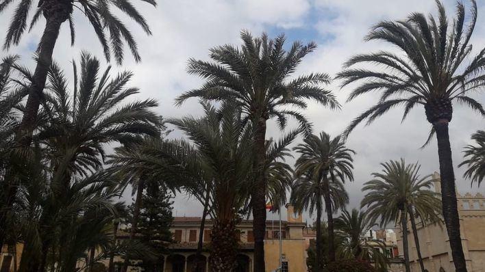 Martes con precipitaciones con riesgo de tormenta y barro