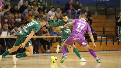 El Osasuna Magna frena al Palma Futsal