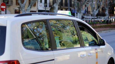 Los taxistas de Pimem regalan una ruta navideña por Palma a los ancianos sin recursos