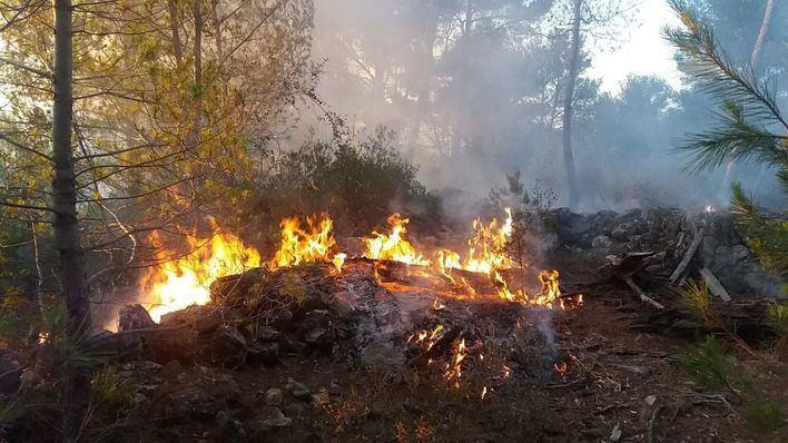 Los incendios forestales este año en Baleares han quemado 104,2 hectáreas