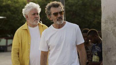 Los Oscar nominan a 'Dolor y Gloria' y a Antonio Banderas