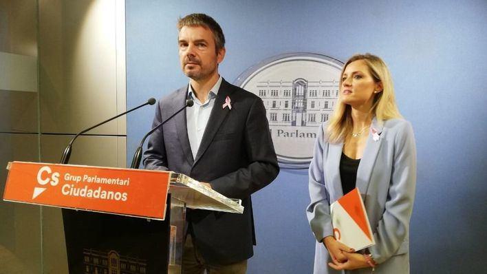 Ciudadanos pide consenso para luchar contra el turismo de excesos y no 'precipitadas operaciones de marketing'