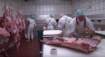 Los ganaderos dicen que el cierre del matadero de Palma sería un 'golpe mortal' para el sector