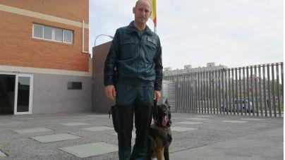 Los guías caninos de la Guardia Civil: