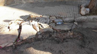 Ciutat de s'Arenal denuncia el 'alto grado de dejadez institucional' en Playa de Palma