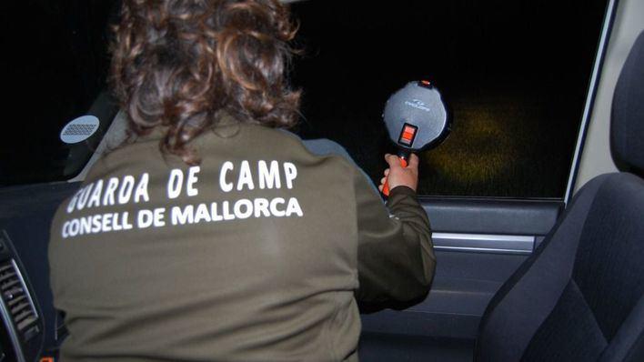 El Consell censa a las perdices, conejos y liebres de Mallorca