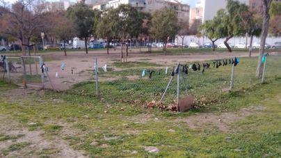 El PP exige a Hila reponer los sanecanes eliminados y acabar con el creciente incivismo