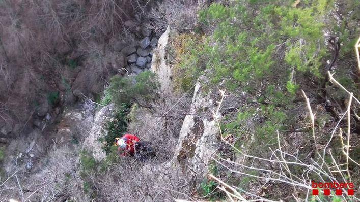 Rescatan a un perro precipitado por un acantilado de 40 metros
