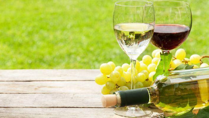 Vinamica reúne en Son Moix a los profesionales del vino de las islas