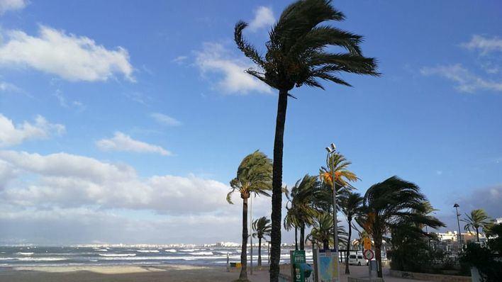 Tormentas eléctricas, viento y granizo en Mallorca, con especial virulencia en la bahía de Alcúdia