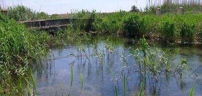 Multan a tres personas por pescar y una cuarta por acampar en Mallorca al no cumplir la alerta sanitaria
