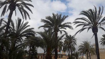 Miércoles nuboso y sin descartar la presencia de lluvia en Baleares