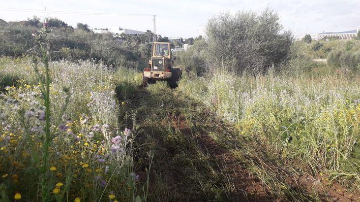 Palma retira 86 toneladas de basura de sus torrentes