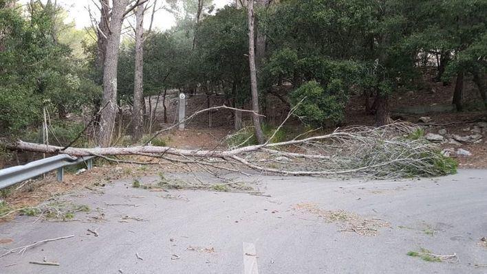 El 112 atiende 31 incidencias por las lluvias caídas en las últimas horas en Mallorca