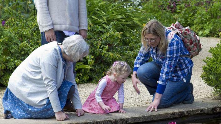 Los abuelos que conviven con menores pueden acompañarles