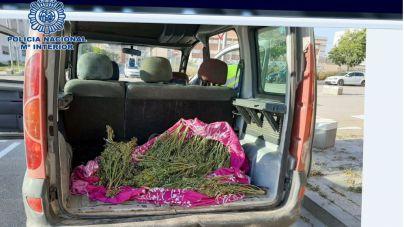 Le paran en un control y acaba detenido debido al fuerte olor a marihuana