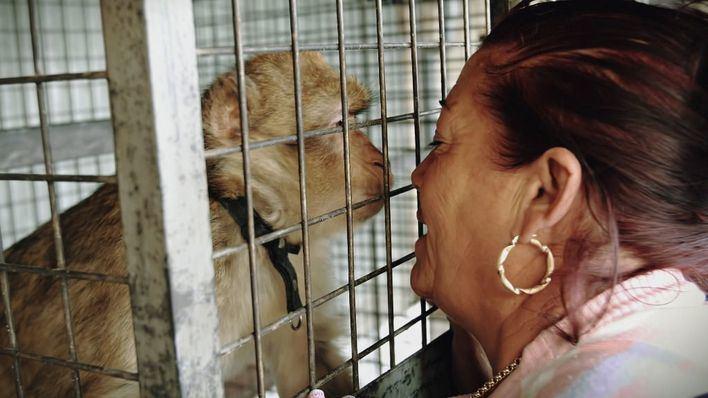 La miniserie de IB3 sobre 'La Paca' desembarca en Amazon