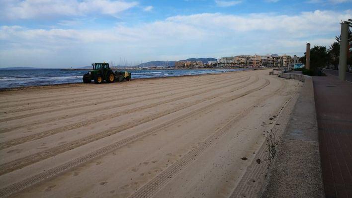 Palma inicia el servicio de socorrismo y vigilancia de playas