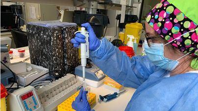Seis nuevos positivos por coronavirus en Baleares