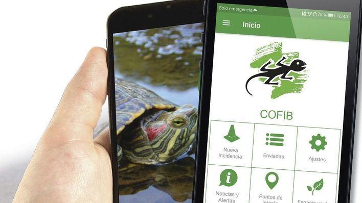 Crean una app para alertar de la presencia de especies invasoras en Baleares