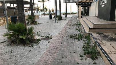 Quejas por el estado de la Playa de Palma que encuentran los turistas del plan piloto