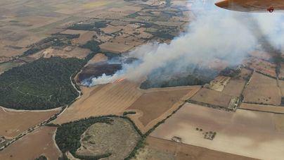 Los bomberos actúan en Vilafranca para sofocar un incendio en unos terrenos agrícolas