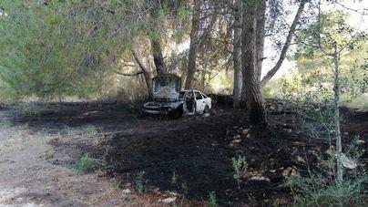 Alarma por un incendio agrícola en Ibiza