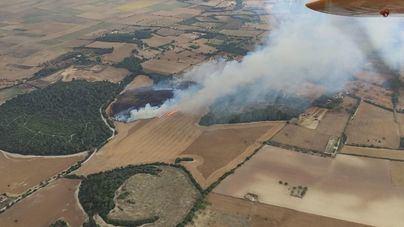 Los fuegos forestales queman 26,2 hectáreas en Baleares en 2020