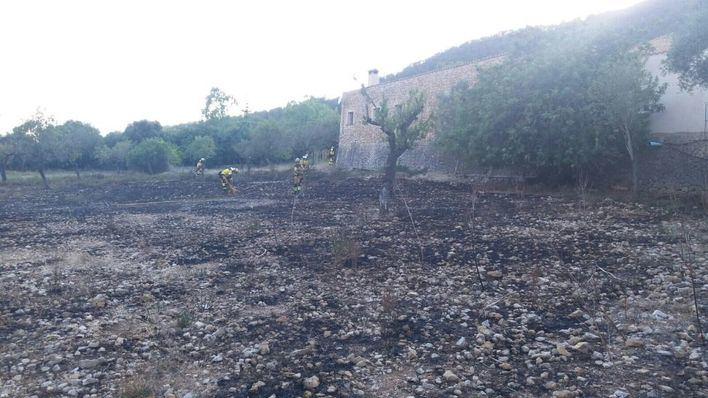 Los bomberos intervienen en la extinción de un incendio agrícola en Alaró