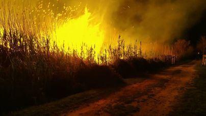 Tres incendios forestales y 31 conatos en Baleares en 2020