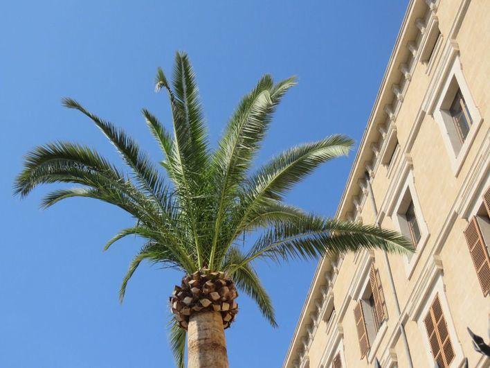 Cielos despejados en Baleares con temperaturas en ascenso