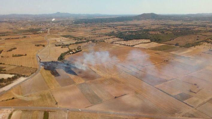 Un incendio forestal en Ariany obliga a intervenir a los bomberos del Consell de Mallorca