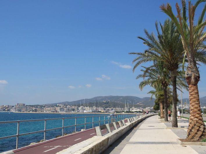Emergencias activa la alerta por calor y alto riesgo de incendio en Mallorca