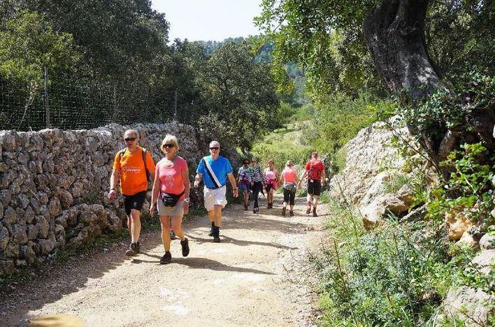 Presentada la candidatura al Observatorio de Turismo Sostenible