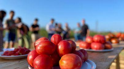 Los agricultores calculan pérdidas de 5.400 millones en productos sin vender a hoteles y restaurantes