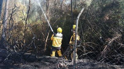 Los incendios forestales han calcinado este año 33,32 hectáreas en nuestas Islas