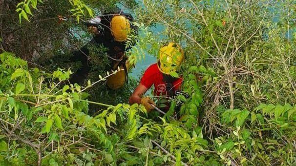 Los bomberos rescatan a un perro al borde de un acantilado en Porto Cristo