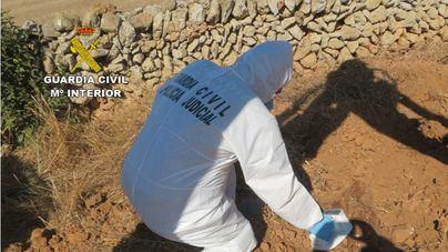 Investigan el maltrato y la muerte de varios caballos en una finca de Menorca