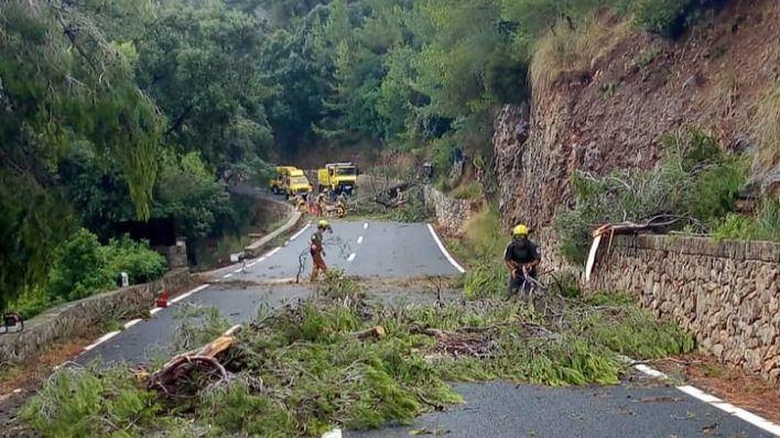 Cortes de carretera en la Serra por el cap de fibló