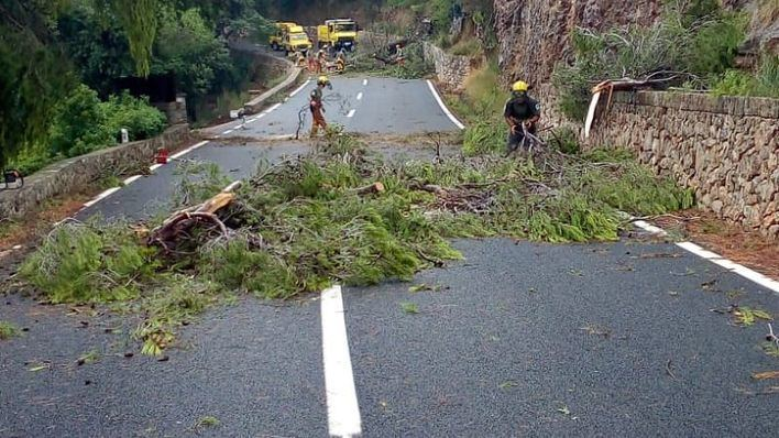Reabren los tramos de la carretera de la Serra accidentados por el cap de fibló
